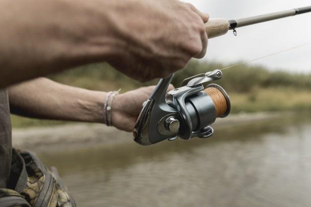 fenekező horgászat infó